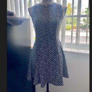 BCBG Fit & Flare Chevron Dress